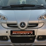 Front Grille F1 River Silver Smart Fortwo 451.