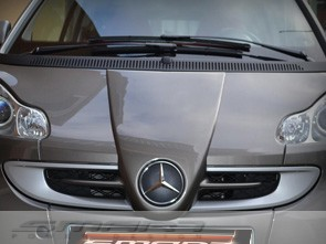 Front Grille Other Color Smart Fortwo 451.