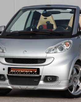 This is a Smart Fortwo 451 Body Kit