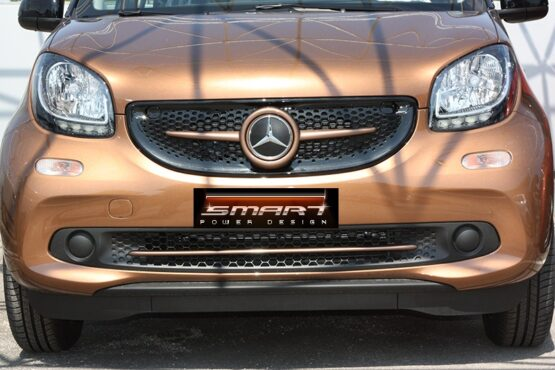 This is the new Smart Fortwo 453 in Hazel Brown Metallic color Edition. The Front Grille and the Trim Strip are also installed on it.